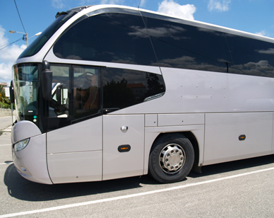3bus02